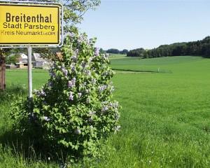 Breitenthal